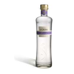 Grappa Monovitigno Traminer Distilleria Segnana Lunelli