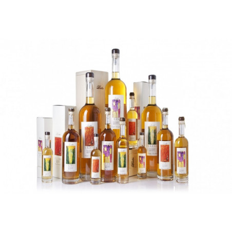 Grappa Elisi Berta Distillerie 3LT.