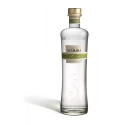 Grappa Monovitigno Moscato Distilleria Segnana Lunelli