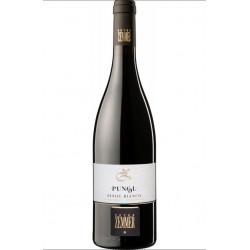 Pinot bianco alto adige doc 2011 Peter Zemmer
