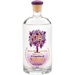 ÙE ®  L'Aquavite D'Uva il Fragolino 38° Nonino Distillatori