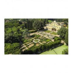 GIFT BOX : Wooden box with 1 BOTTLE Villa Antinori Rosso  Antinori - 1 BOTTLE Chianti Classico Peppoli  Antinori
