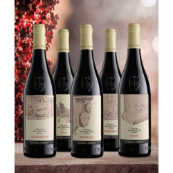 Box Set of 5 Cru Amarones of Valpolicella - Domini veneti