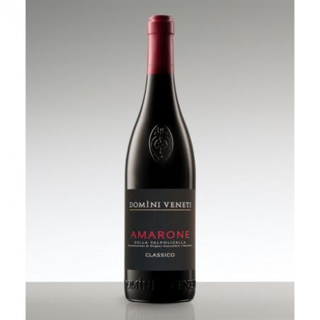 Amarone della Valpolicella Classico Docg  2015 Domini Veneti